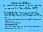 additional un rules the un minimum rules for non custodial measures the tokyo rules 1990