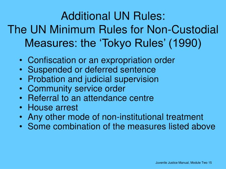 Additional UN Rules: