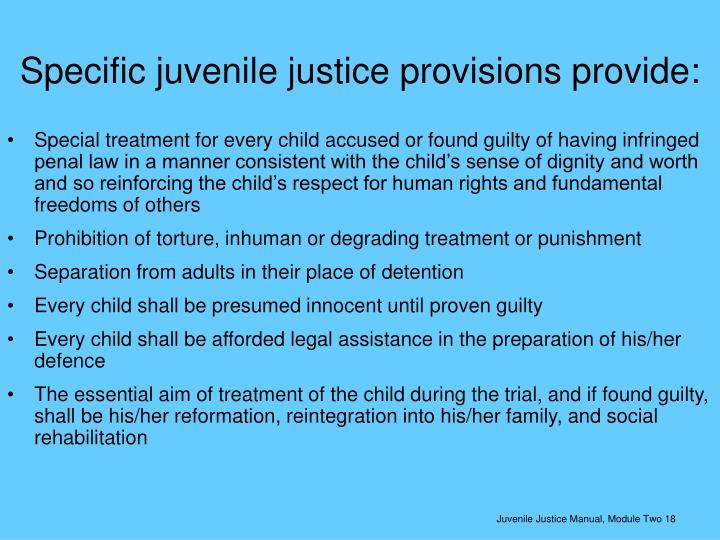 Specific juvenile justice provisions provide