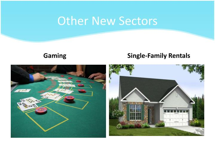 Other New Sectors