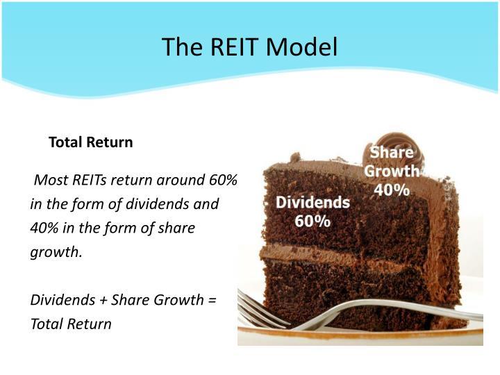 The REIT Model