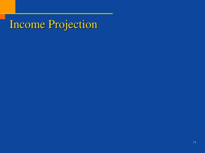 Income Projection