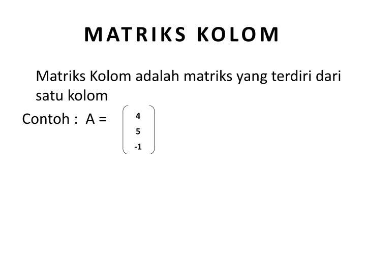 MATRIKS KOLOM