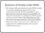 quantum of penalty under fema