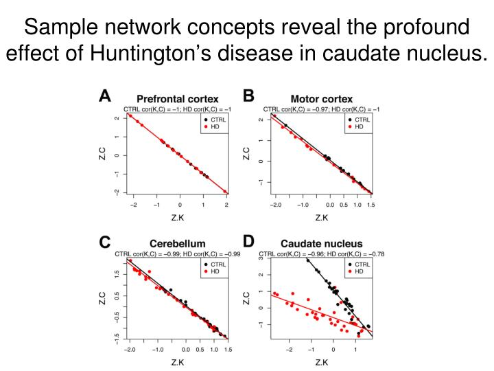 Sample network concepts reveal the profound effect of Huntington's disease in caudate nucleus.