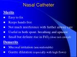 nasal catheter2