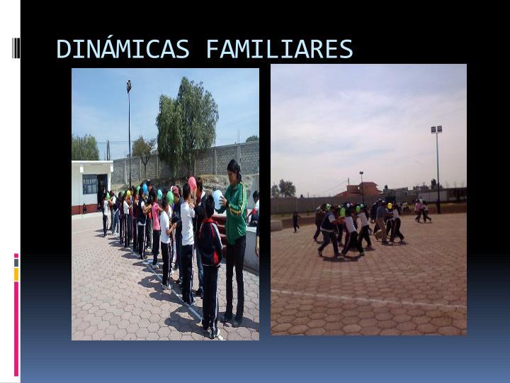 DINÁMICAS FAMILIARES