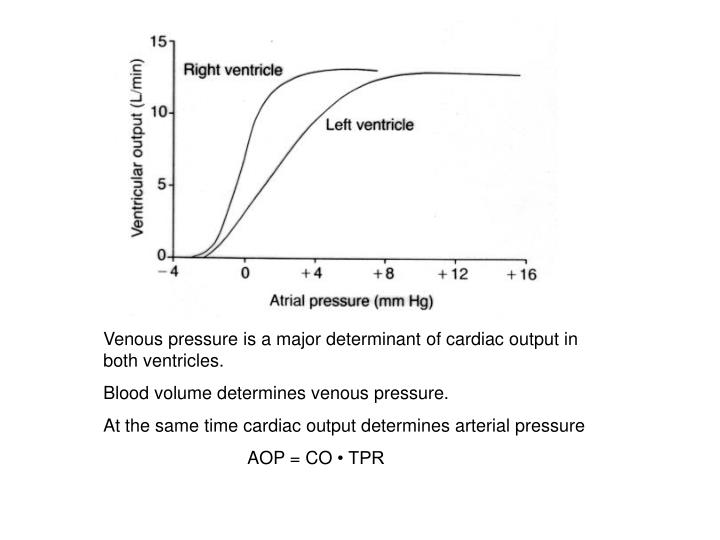 Venous pressure is a major determinant of cardiac output in both ventricles.
