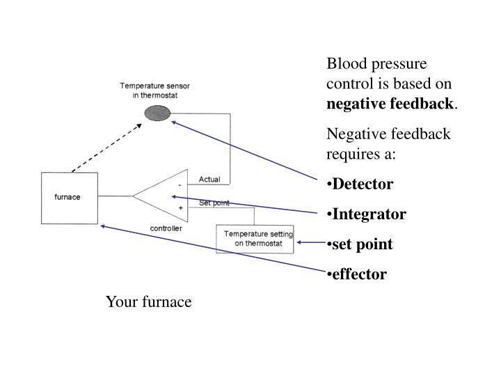 Blood pressure control is based on