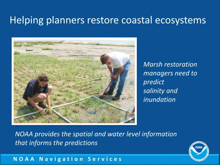 Helping planners restore coastal ecosystems