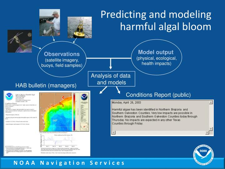 Predicting and modeling