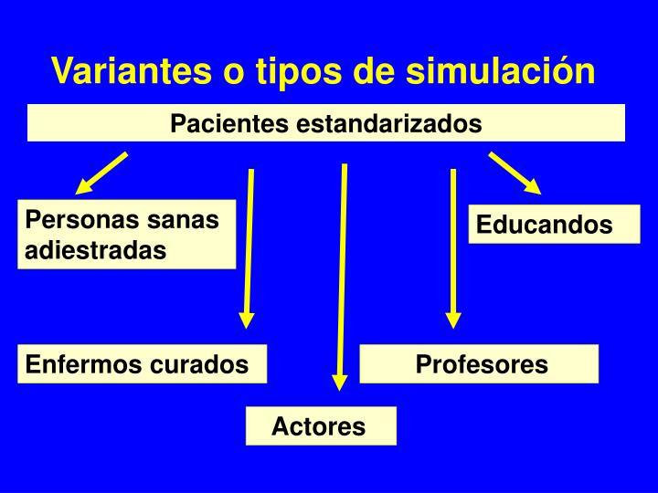 Variantes o tipos de simulación