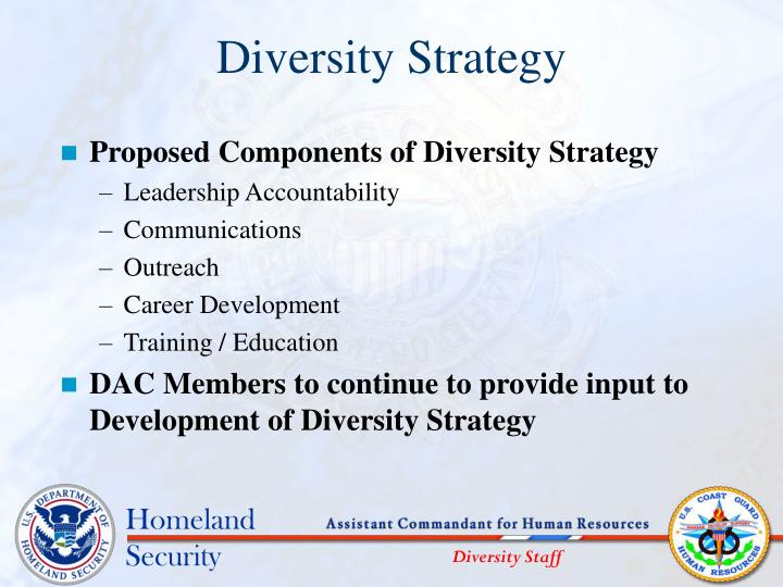 Diversity Strategy