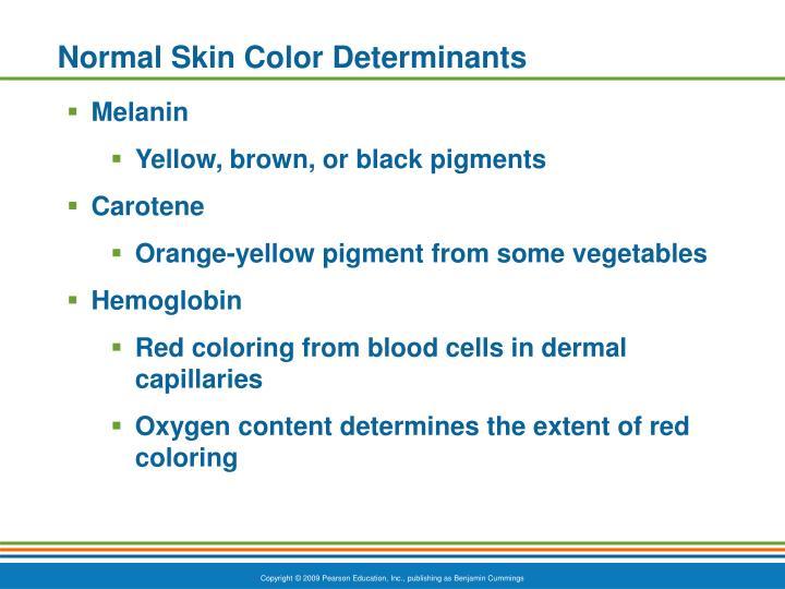 Normal Skin Color Determinants