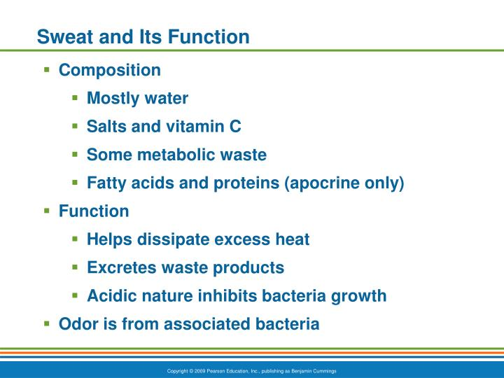 Sweat and Its Function