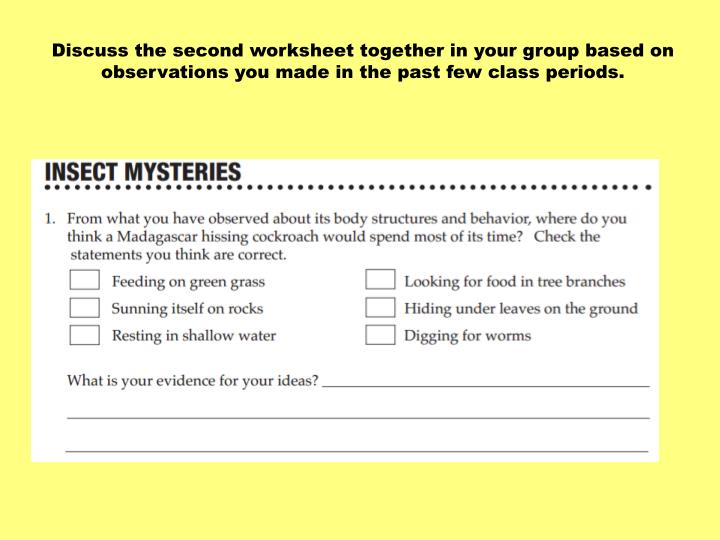 Discuss the second worksheet together in your group based on observations you made in the past few class periods.