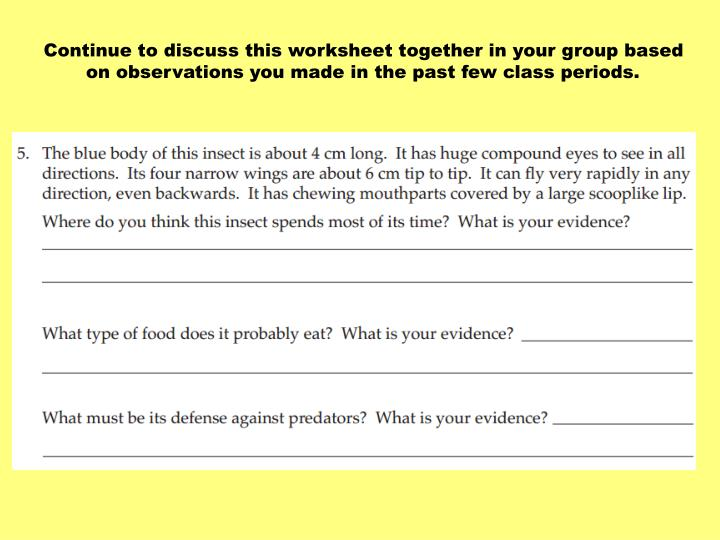 Continue to discuss this worksheet together in your group based on observations you made in the past few class periods.