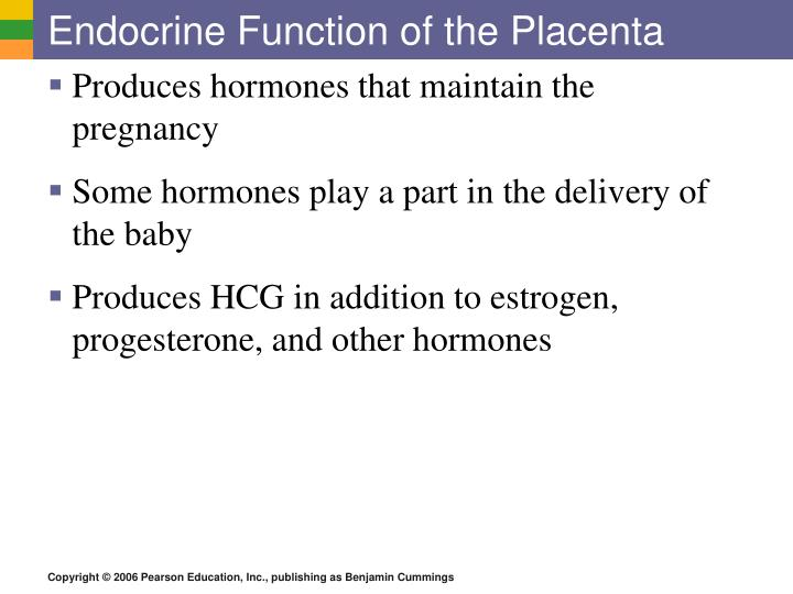 Endocrine Function of the Placenta