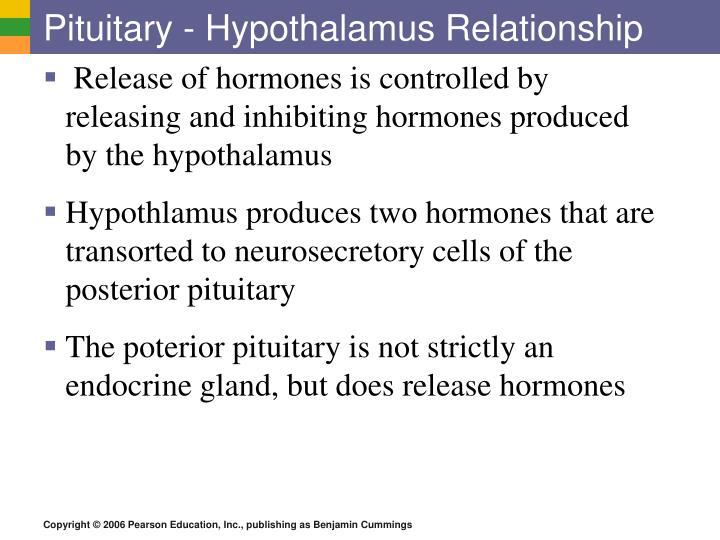 Pituitary - Hypothalamus Relationship