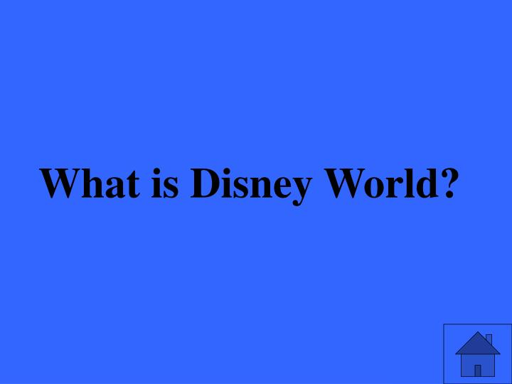 What is Disney World?