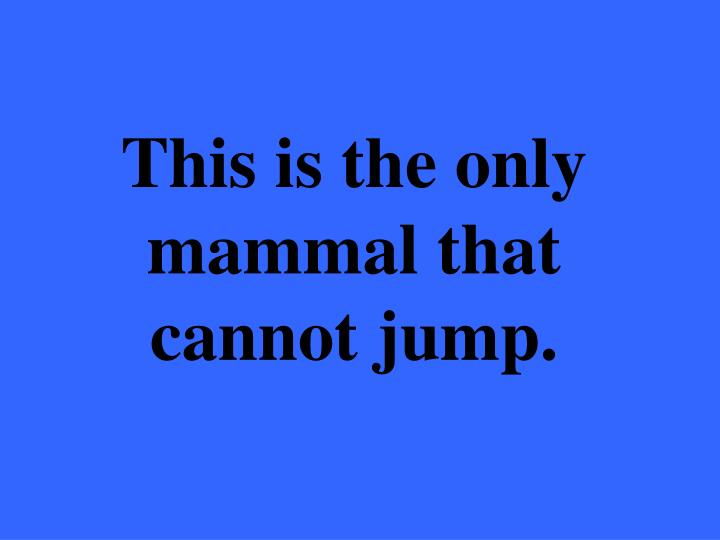 This is the only mammal that cannot jump.