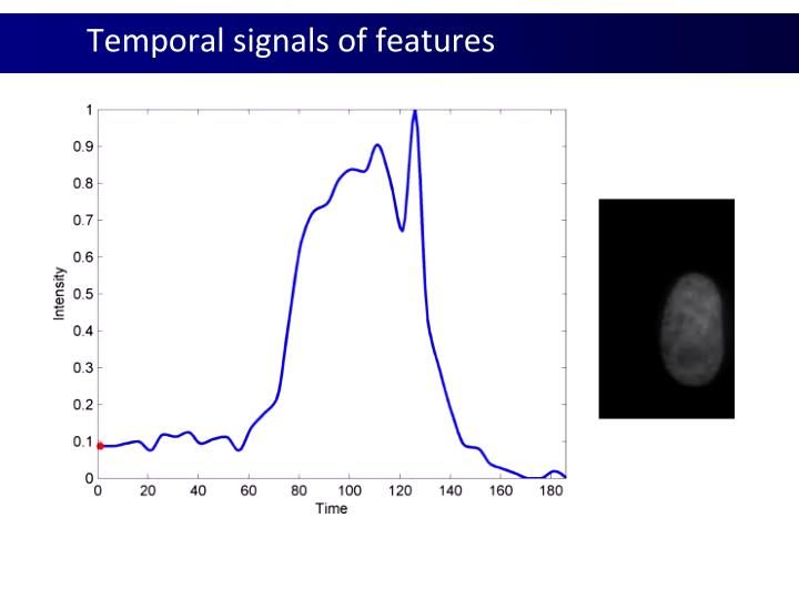 Temporal signals of features