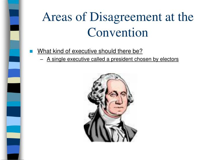 Areas of Disagreement at the Convention