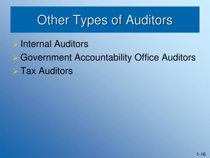Other Types of Auditors
