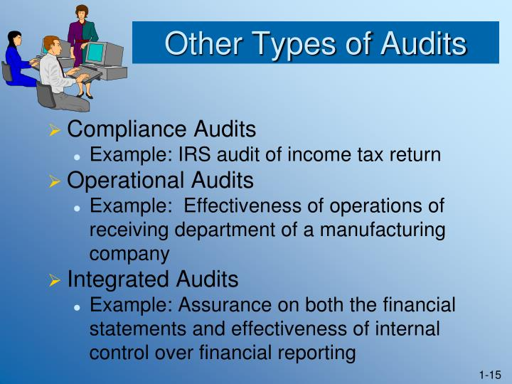 Other Types of Audits