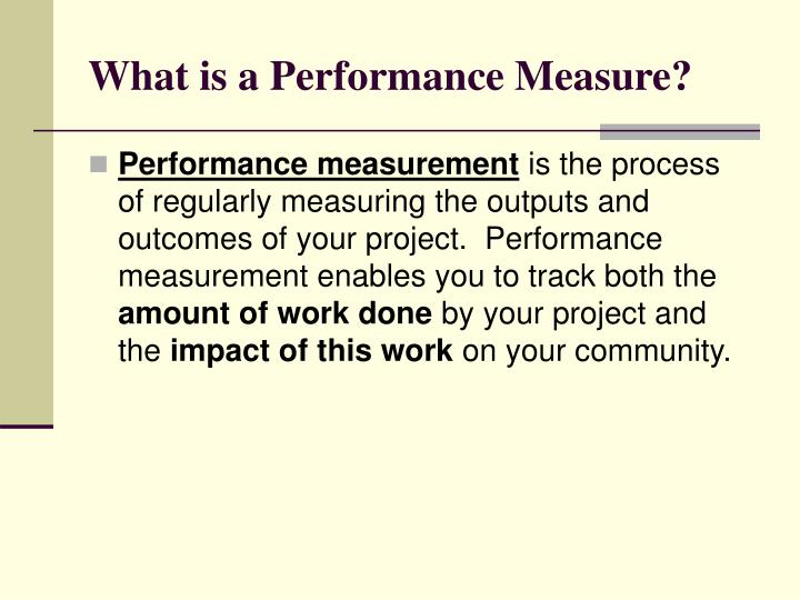 What is a Performance Measure?