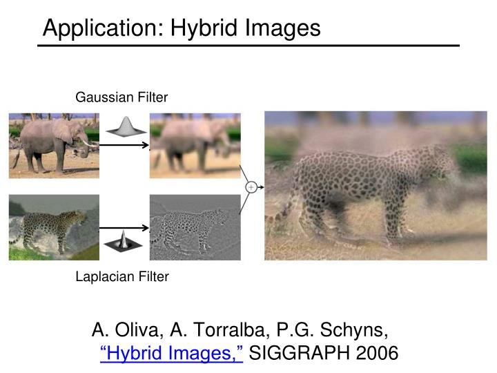 Application: Hybrid Images