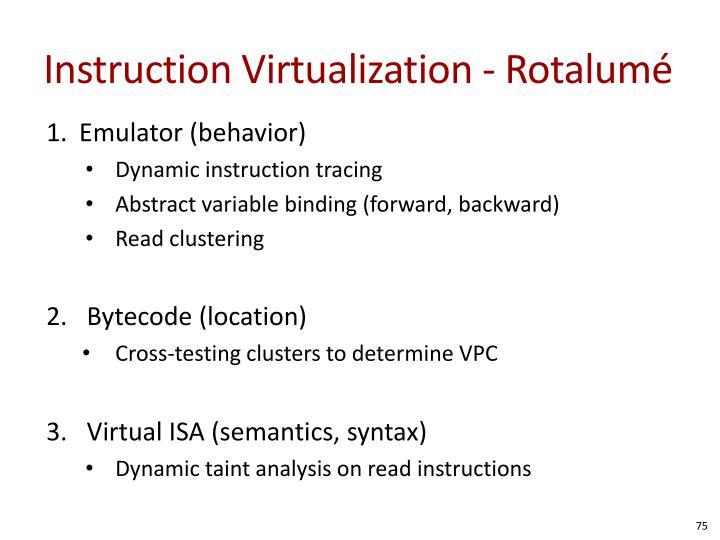 Instruction Virtualization -