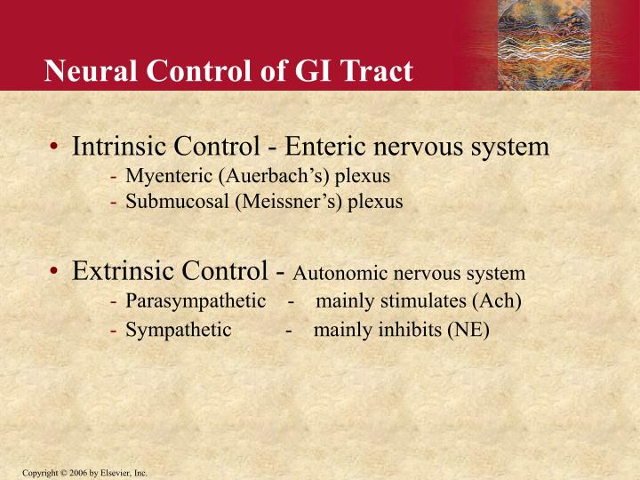 Neural Control of GI Tract
