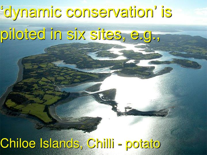 'dynamic conservation' is piloted in six sites, e.g.,