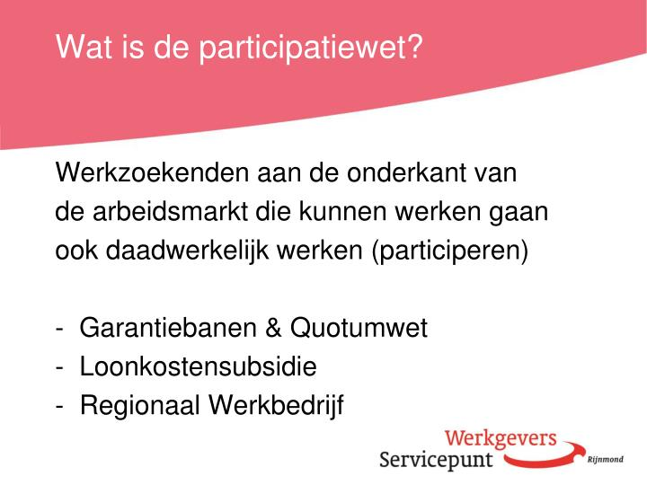 Wat is de participatiewet?