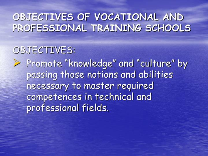 OBJECTIVES OF VOCATIONAL AND PROFESSIONAL TRAINING SCHOOLS
