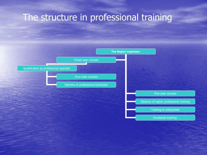 The structure in professional training