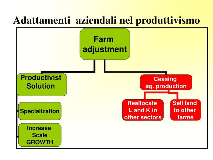 Adattamenti  aziendali nel produttivismo
