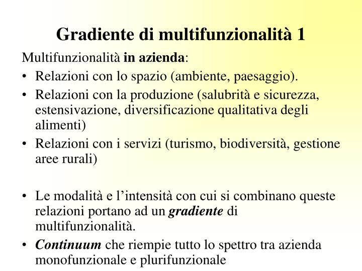 Gradiente di multifunzionalità 1