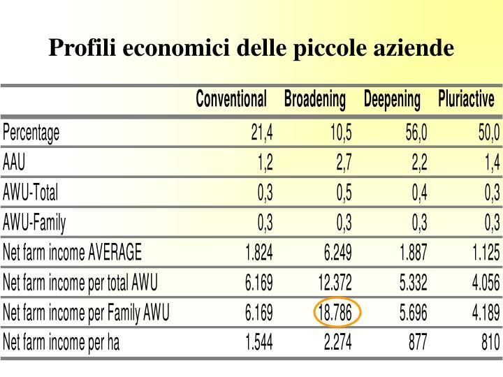 Profili economici delle piccole aziende