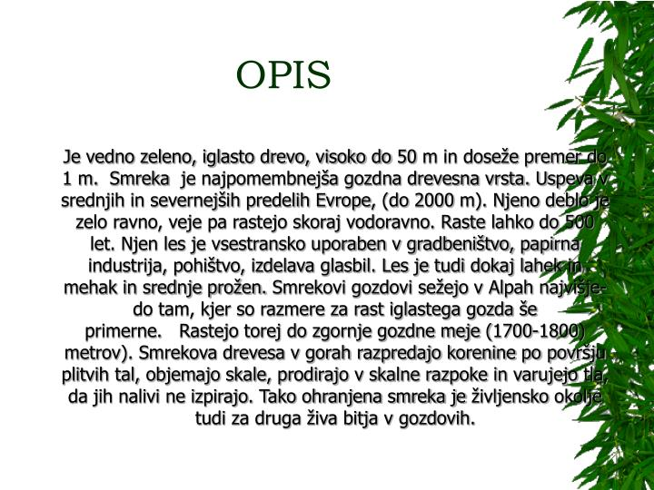 OPIS