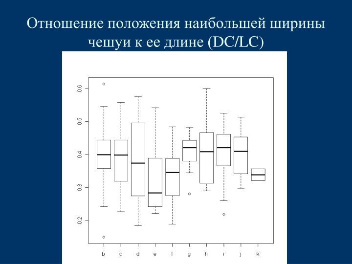 Отношение положения наибольшей ширины чешуи к ее длине (