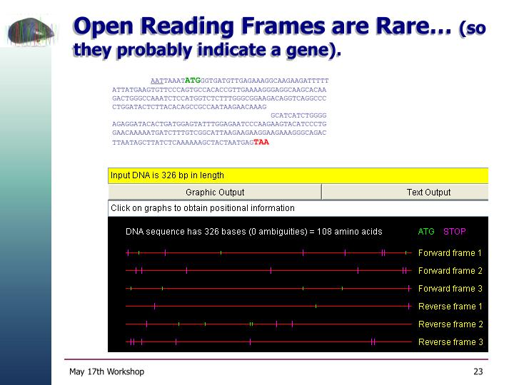 Open Reading Frames are Rare…