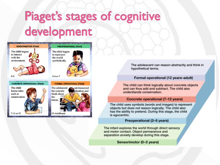 phychology paper on cognitive developmental stages Cognitive development research paper starter  on the field-particularly in the areas of cognitive, developmental,  broad stages of cognitive development.