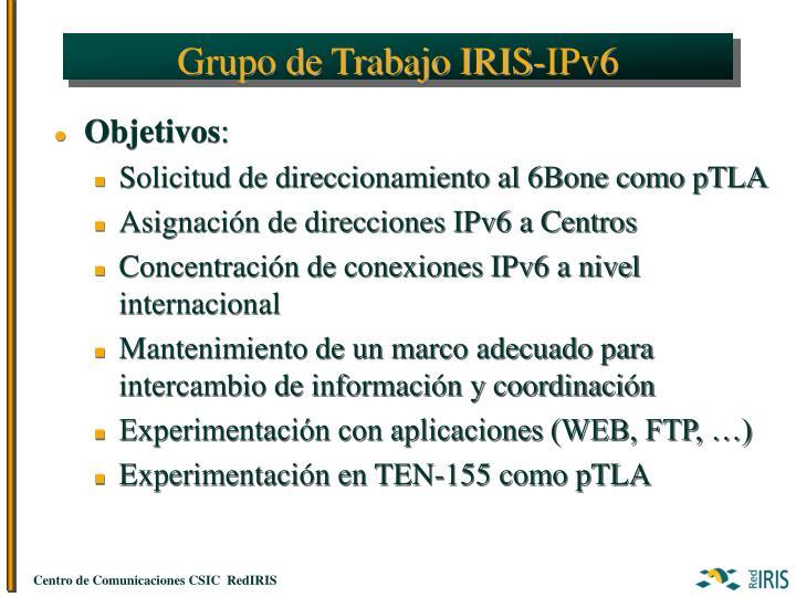 Grupo de Trabajo IRIS-IPv6