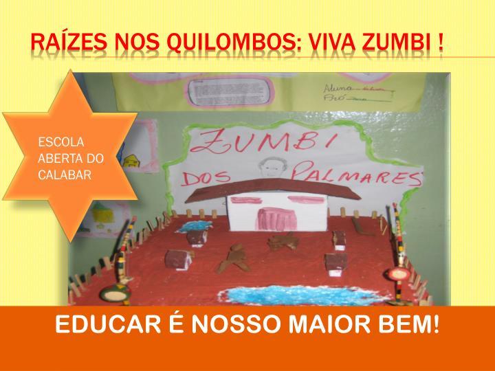 Raízes nos quilombos: viva zumbi !