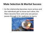 mate selection marital success2