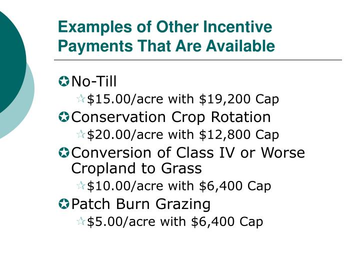 Examples of Other Incentive Payments That Are Available