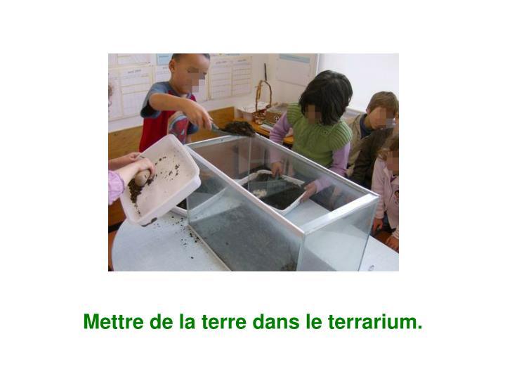 Mettre de la terre dans le terrarium.