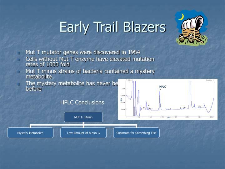 Early Trail Blazers